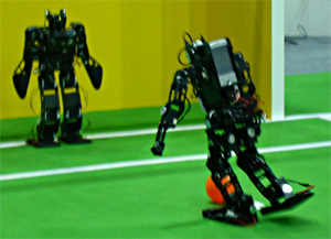 RoboCup 2006 Humanoid League Penalty Kick
