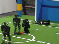 RoboCup 2006 Humanoid League 2 vs. 2 Soccer Games Final